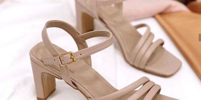 تولیدی کفش مجلسی زنانه